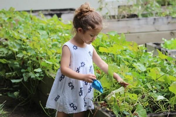 Garten_Kindersicher_machen