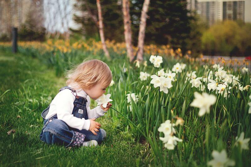 Kind_Garten_Rasen_Blume